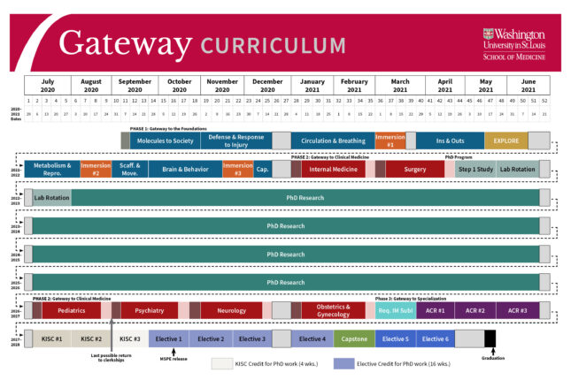 Gateway Curriculum Overview for the MSTP Program